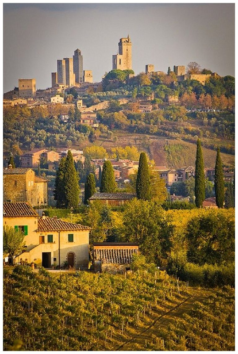 New review of Torciano Winery at San Gimignano