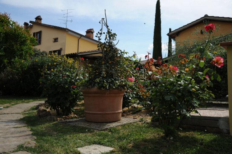 5 cose da scoprire nella Tenuta Torciano