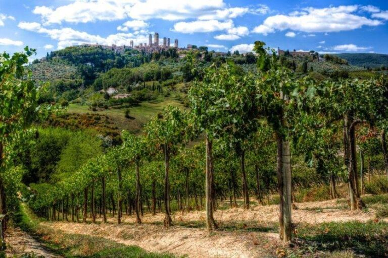 The wellbeing of mind and body in Tuscany