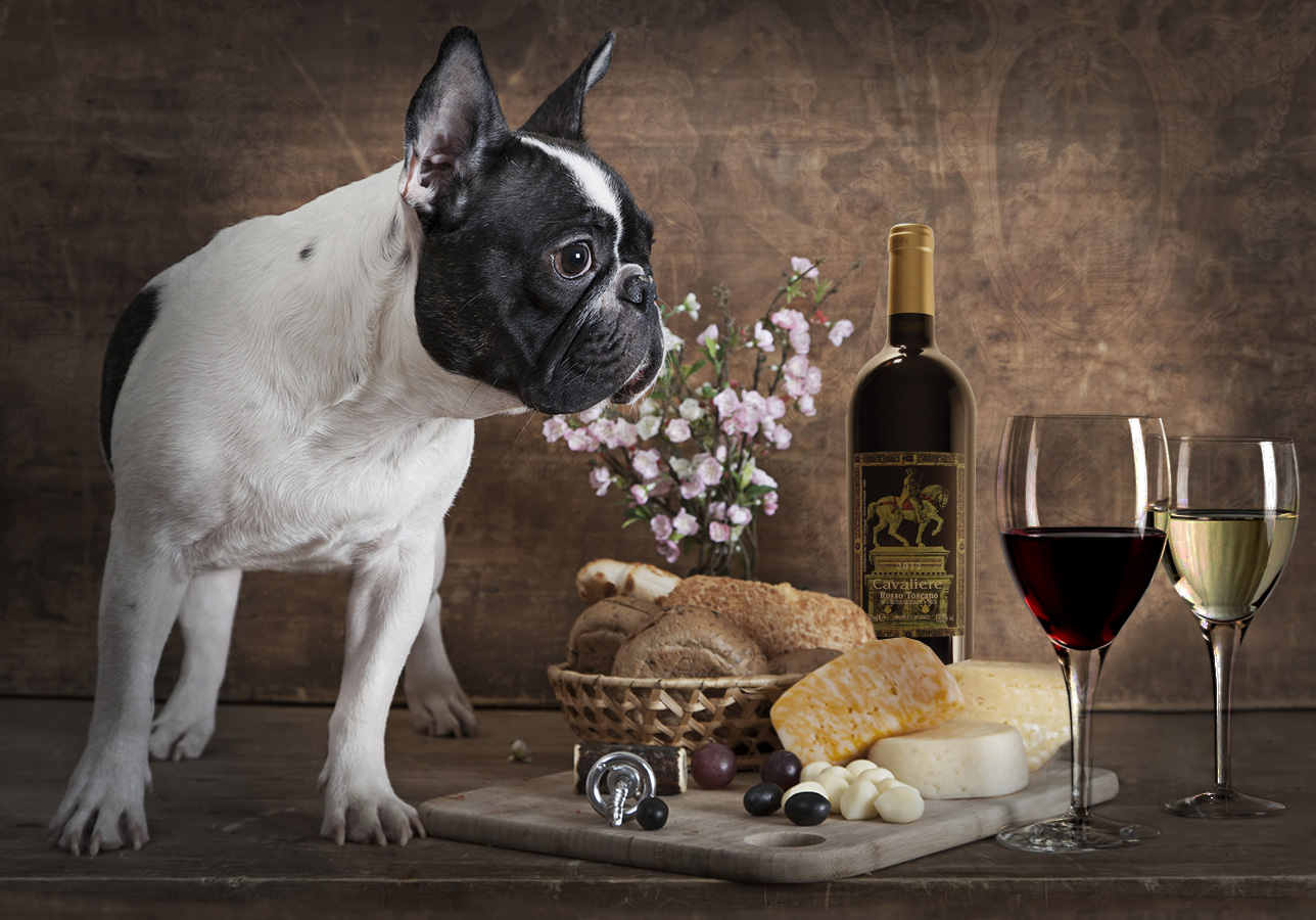 Pet and Wine!