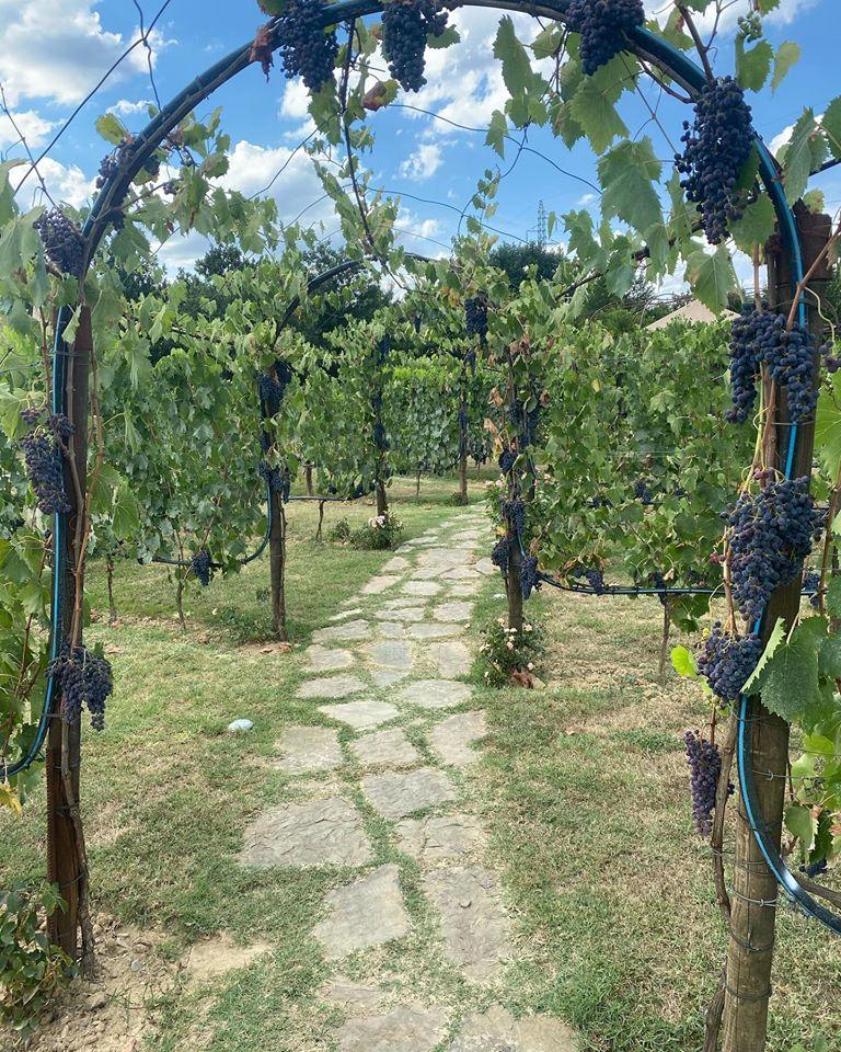 Settembre – è l'evento più atteso dagli appassionati del Vino toscano