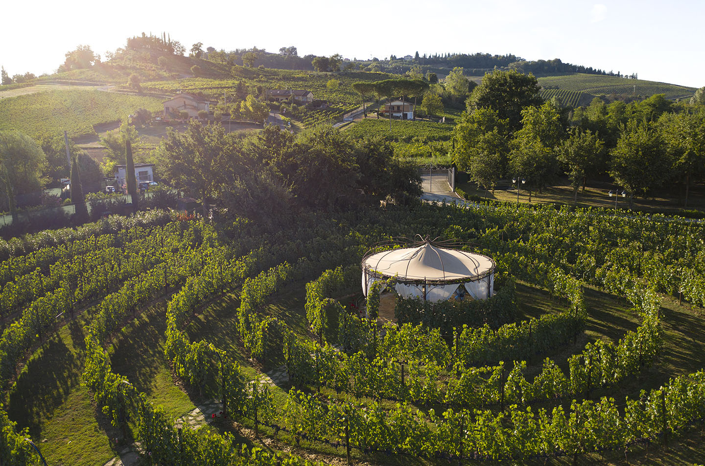 Live the vineyard life in Tenuta Torciano Winery
