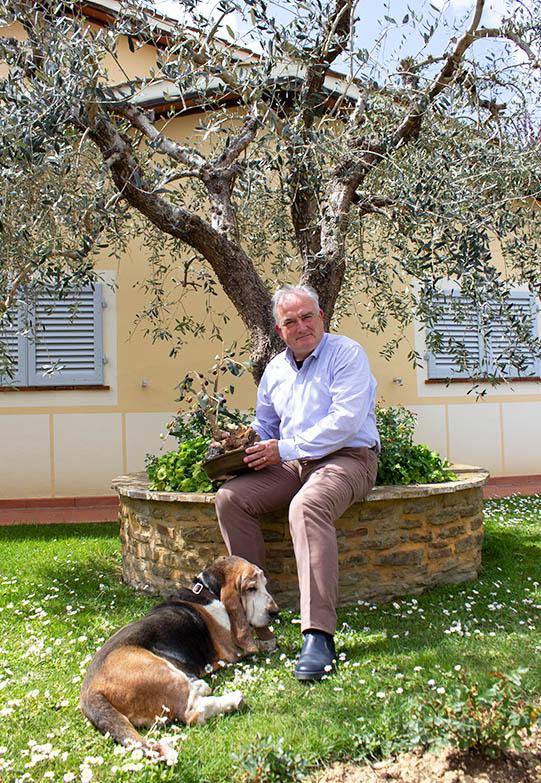 """OLIVE – """"Raccolta 2020, raramente si son viste olive così belle e piene di olio da spremere a freddo nel frantoio"""""""